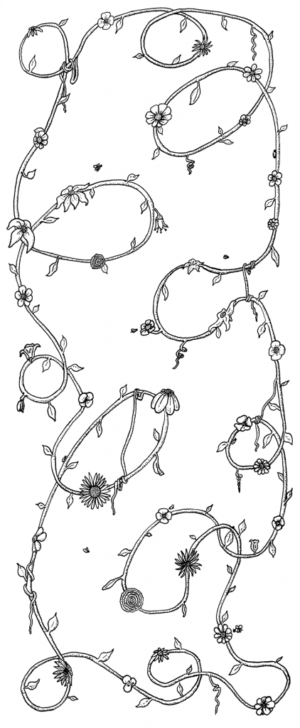 Pen & Ink of a vine with flowers