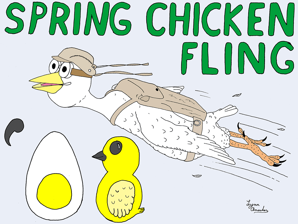 Hand drawn postcard for Spring Chicken Fling '08